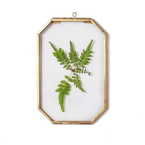 Cornice galleggiante in vetro dorato ottagonale da parete, cornice in ottone da appendere per esporre piante pressate e fiori secchi fai da te foto a base di erbario 10 x 15 cm, solo cornice in vetro