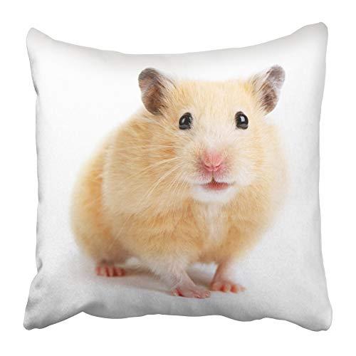 AEMAPE Fundas de Almohada de Tiro Beige jerbo hámster Ratones Linda Mascota Divertido pequeño Animal roedor 40x40 cm Funda de cojín
