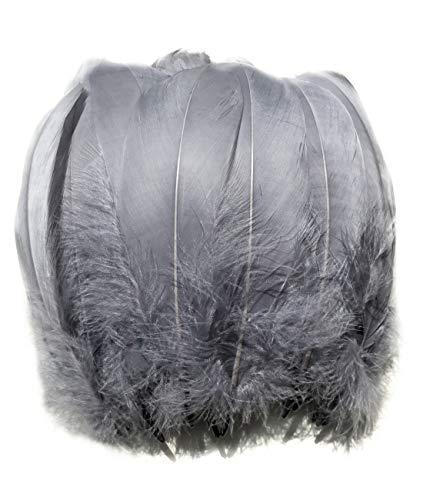 ERGEOB® Echte große Gänsefedern in Grau / 15-22cm Federnlänge, 100 Stück pro Verpackung, 21 Farbvarianten, Fasching, Karneval, Basteln, Dekoration, Hochzeit.