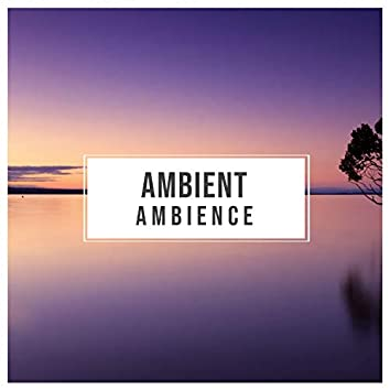 # Ambient Ambience