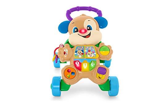 Fisher-Price FRC87 Lauflernhilfe für Babys, Mehrfarbig, Norme
