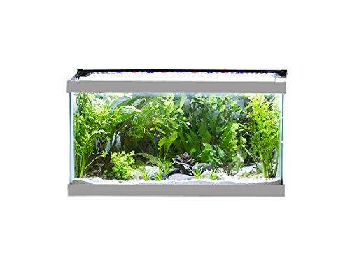 Finnex Ray2 Aquarium LED Daylight