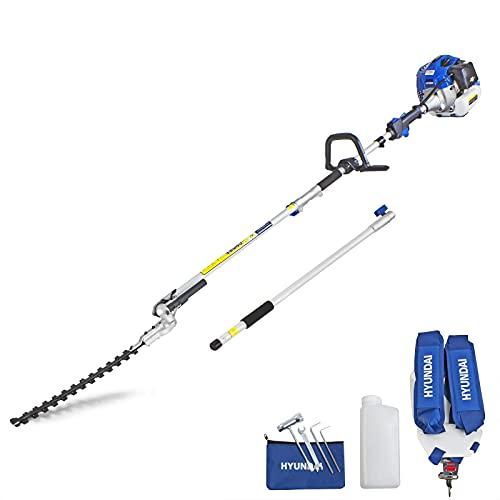 Hyundai 52cc Long Reach Petrol Pole Hedge Trimmer/Pruner