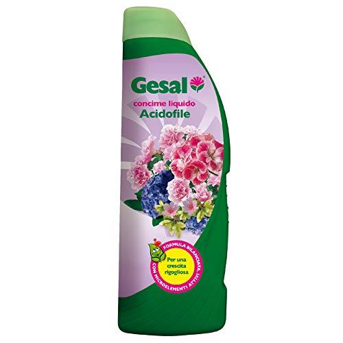 GESAL Concime Liquido Acidofile, Per una Crescita Rigogliosa, 1 l
