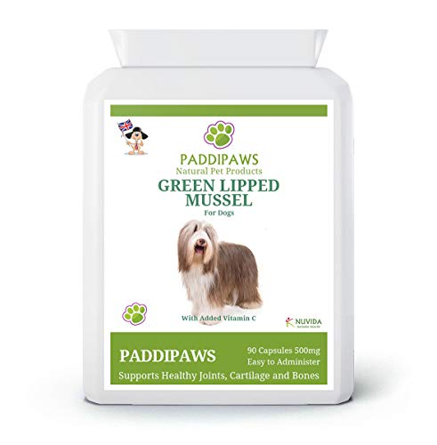 PADDIPAWS High Strength Green Lipped Mussel for dogs with added Vitamin C - Sustainably farmed - 90 Green Lipped Mussel Powder Capsules - Easy to Administer - Twist and Sprinkle