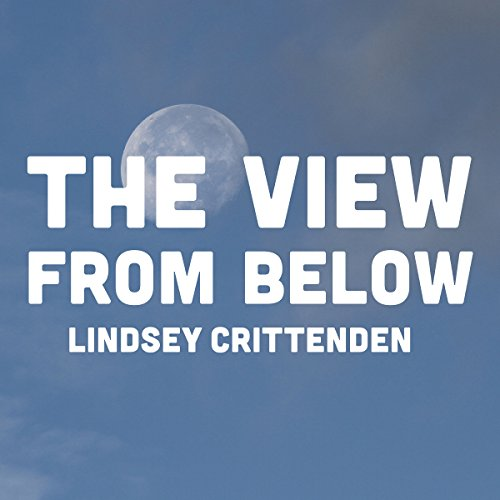 The View from Below audiobook cover art