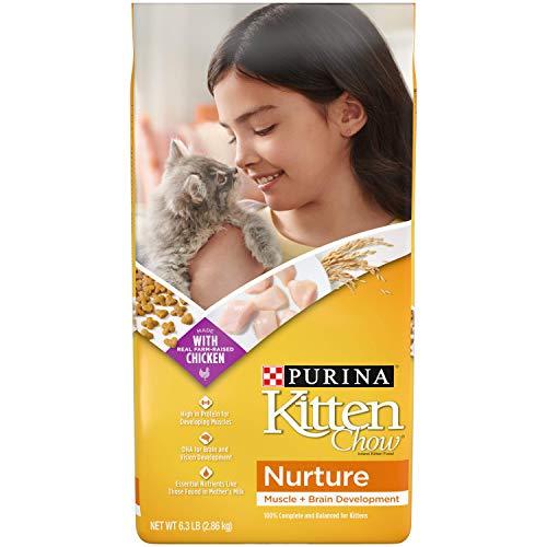 Purina Kitten Chow Dry Kitten Food