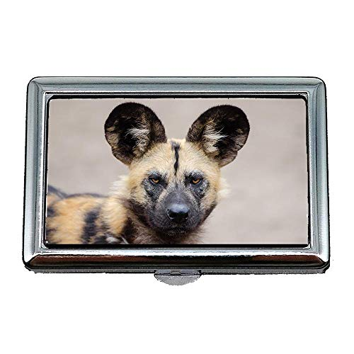 Zigaretten-Aufbewahrungsbehälter / -Kasten, afrikanischer Wilder Hund Lycaon Pictus fleischfressender Säugetier, Visitenkarte-Kartenhalter-Fall rostfreier