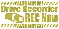 カッティングステッカー DriveRecorder REC Now(ドライブレコーダー録画中) 約80mmX約170mm ゴールド 金