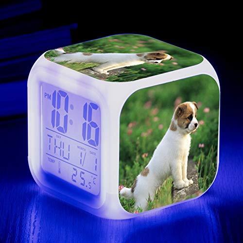 Totots Animal de Reloj de Alarma electrónico: Jack Russell Terrier, Color Colorido Creativo Cambiando el Reloj de Alarma Cuadrado, Mini Adornos de Escritorio, Luz de Noche de Anime, Reloj Despertador