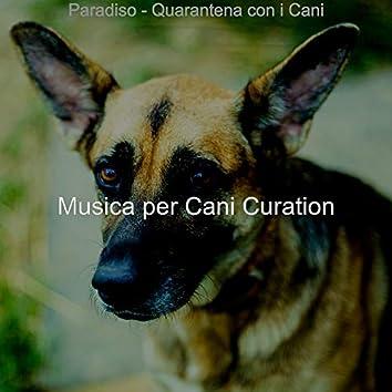 Paradiso - Quarantena con i Cani