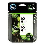 HP 65 | 2 Ink Cartridges | Black | Works with HP DeskJet 2600 Series, 3700 Series, HP ENVY 5000 Series, HP AMP 100, 120, 125, 130 | N9K02AN