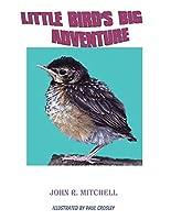 Little Bird's Big Adventure