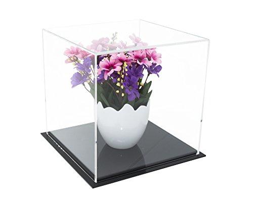 Better Display Cases Vielseitig Acryl Vitrine, Würfel, Staubschutz oder Riser 20,32 cm x 20,32 cm x 20,32 cm (A059-CDS)