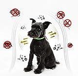 Zoom IMG-1 prozada collare antipulci cane collari