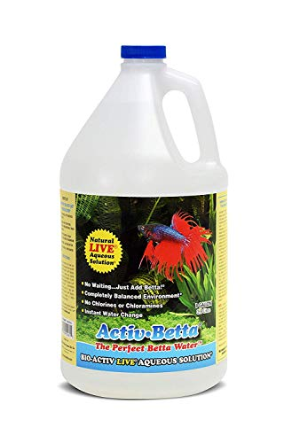 Activ Beta by Natures Ocean, Instant Water for Betta and All Fresh Water Fish- BIO ACTIV Live AQUEOUS Solution- 1 Gallon
