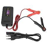 aqxreight - Cargador de batería de coche, Reparación inteligente de motocicleta Cargador de batería de coche 12V 4A 100-240V, Carga automática(EU Plug)