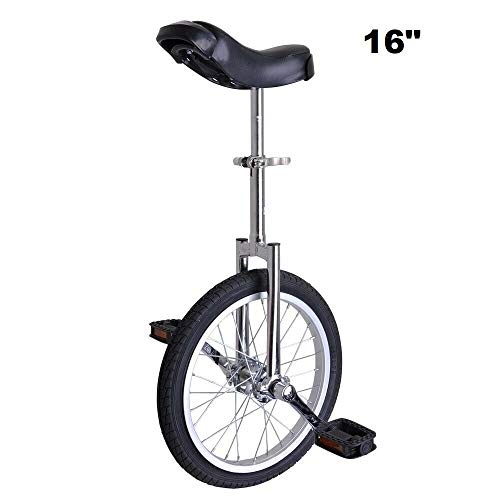 Best Review Of Awesome 16 inches Bicycle Bike Wheel Scooter Circus Gift Fitness(Silver)