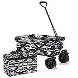 Best Carts - Nasscarts, Foldable Beach Cart with Bonus Cooler Bag Review