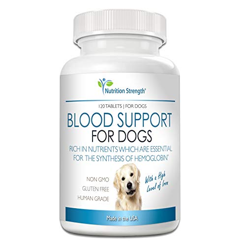 Nutrition Strength Blood Support for Dogs  Supplement for Anemia in Dogs  Promotes Red Blood Cell Health  with a High Level of Iron  Vitamin B12  Organic Spirulina and Purpurea  120 Chewable Tablets