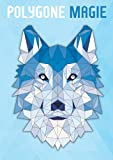 Polygone Magie: Das etwas andere Malbuch mit 50 tollen polygonen Tieren für Kinder ab 10+ Jahren zum Ausmalen und als Kopiervorlage für PädagogInnen.