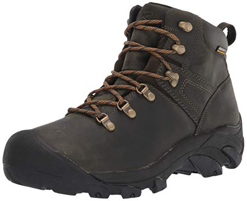 KEEN mens Pyrenees Mid Height Waterproof Leather Hiking Boot, Forest Night/Black, 10.5 US