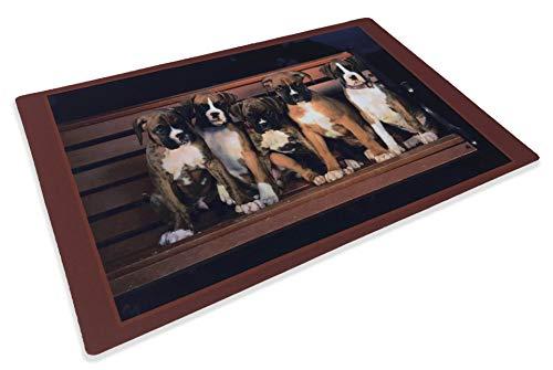 Felpudo de perros Bóxer, 40x 60cm ✅