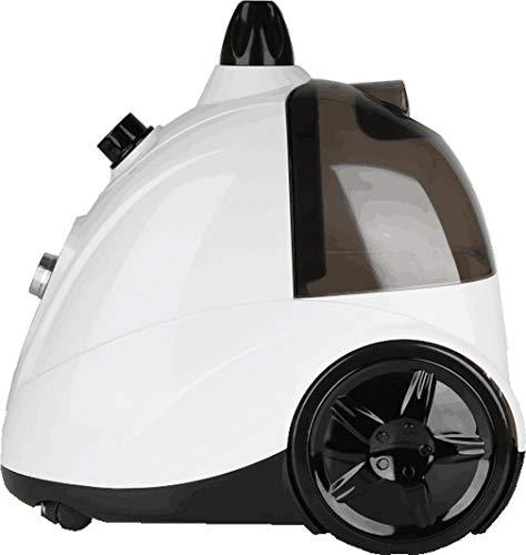Stiratrice verticale professionale 2200 W, Portata di vapore regolabile fino a 55 g/min, Serbatoio estraibile: 3 L