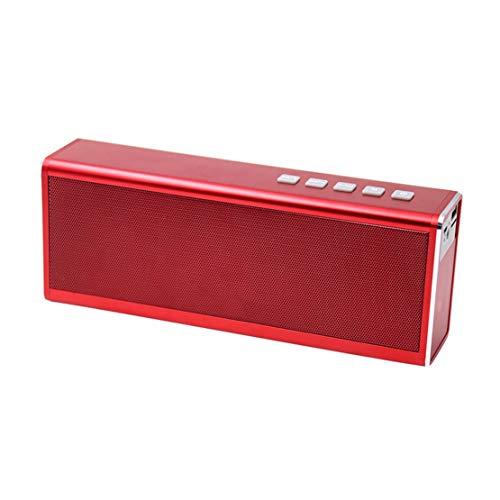 HIOD Al Aire Libre Bocina Bluetooth Metal Batería de 4000 mAh 20h Tiempo de Juego Alcance de 66 pies Altavoz Inalámbrico Apoyo Radio FM/TWS