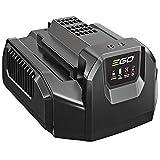 Ego Cargador estándar CH2100E Cargador batería