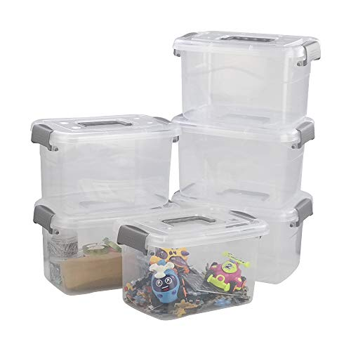 Leendines Cajas Plastico con Tapadera, Caja Plastico Almacenaje, Transparente, Lote de 6