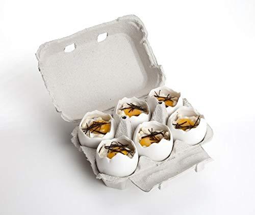 Vasos Originales Con Forma De Huevos Rotos De Porcelana Para Degustaciones (6 Unidades)