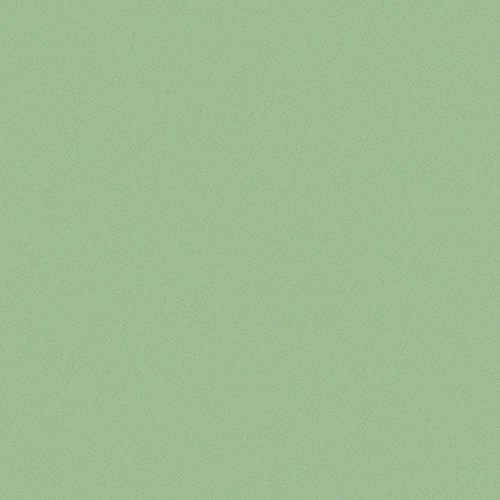 Clairefontaine Pastelmat Light Green Pack of 20 (25x35cm)
