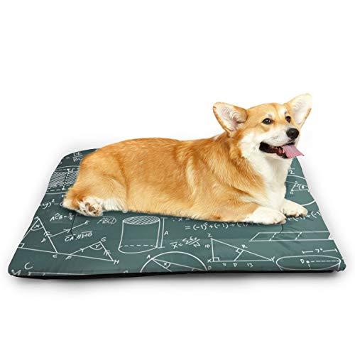 Niet toepasbaar wiskundige wiskundige formule vergelijking huisdier kat en hond pad waterdichte huisdier matras absorberende handdoek tapijt, 31