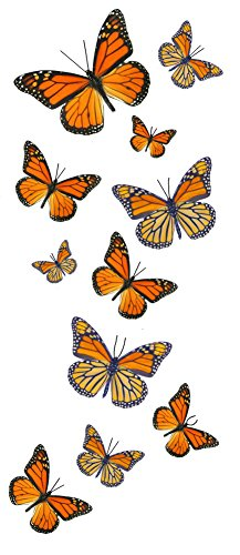 55 Monarch Butterfly Temporary Tattoos