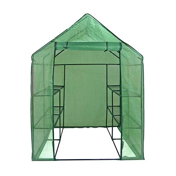 """Mini Walk-in Greenhouse Indoor Outdoor -2 Tier 8 Shelves- Portable Plant Gardening Greenhouse (57L x 57W x 77H Inches… 2 【Strong Construction】This mini walk-in greenhouse is built with high quality metal frame with powder coating, durable bearing net on each layer is strong enough to hold more seed trays, pots and plants growth. The clear waterproof PE cover protects plants from frost or pests while allowing nourishing sunlight to pass through. 【Indoor Outdoor Greenhouse】Waterproof and UV protection, ideal growing environment , can be used indoor and outdoor at all seasons. Perfect for protecting young plants or extending the plant growing season. 【Portable & Easy Setup】Overall Dimensions: 57""""L x 57""""W x 77""""H, Perfect Size for Easy Moving to Indoor or Outdoors. Easy to assemble, no tools required. Enjoying a lot of fun of the flowers and plants in your leisure time!"""