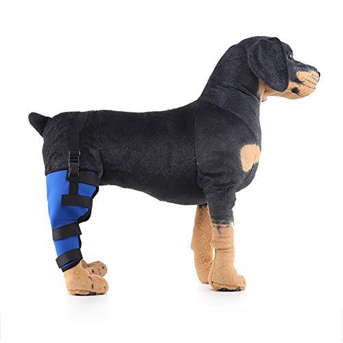 N \ A Ortesis De Protección De La Pata Trasera del Perro, Que Se Utiliza para Comprimir Y Vendar El Dolor De La Pata Trasera del Perro Causado por Una Lesión O Cirugía para Evitar Que El Perro Lama