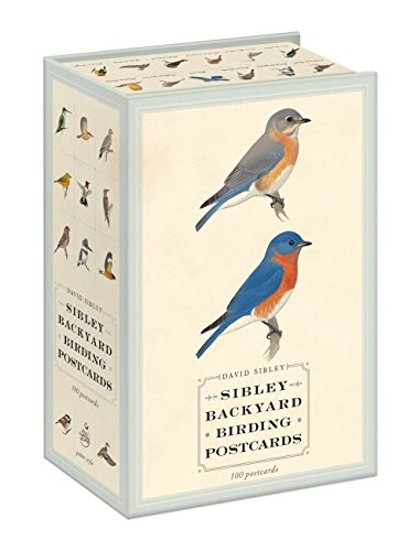 Sibley Backyard Birding Postcards: 100 Postcards (Sibley Birds)