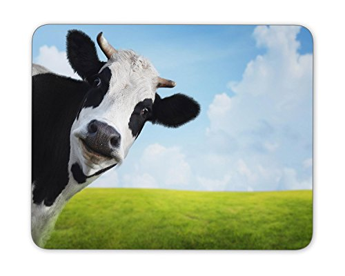 Funny cow on a green summer meadow Mouse Pad mouse mouse pad Mouse Pad Pad Office Mouse Pad Gaming Mouse Pad Mat Mouse Pad mousepad Dimension: 9.5' x 7.9'