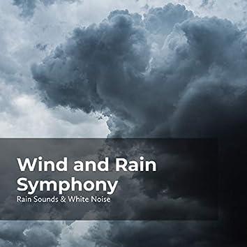 Wind and Rain Symphony