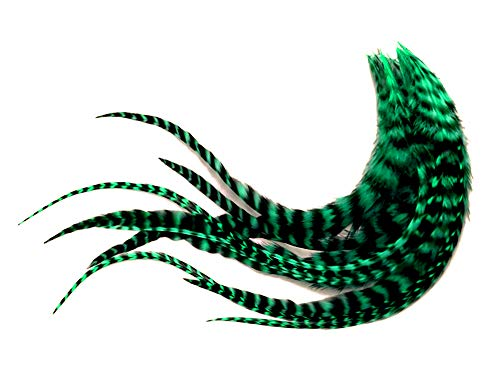 1 Dozen - Medium Peacock Green Grizzly Rooster Saddle Whiting Hair Extension Feathers Fly Tying Supply | Moonlight Feather
