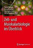 Zell- und Molekularbiologie im Überblick