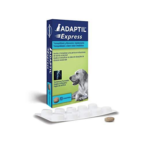 ADAPTIL Express - Tranquiliza a los perros de forma rápida - Tormentas, Fuegos artificales, Petardos, Fiestas, Viajes, Miedos, Visitas al veterinario - Caja de 10 comprimidos