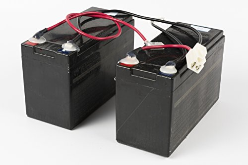 Razor Electric Scooter Battery for E200 Scooters (Versions 13+) & e300 Scooters (Versions 11 & 13+)