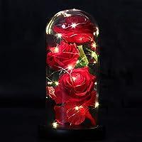 Beauty and the Beast Rose - Ottimo per l'arredamento di casa sarebbe fantastico in qualsiasi luogo tu voglia. Inoltre rende Great Gift per San Valentino, Anniversario, Matrimonio, Compleanno, ecc. La nostra luce rosa incantata dona una sensazione pia...