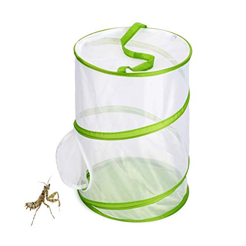 Knowooh Schmetterlings und Insektennetz Große Tragbare Insekt Schmetterling Netz Faltbare Transparent Anti-Moskito Netzkäfig Für Insektenhabitat, Sämlingszucht