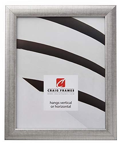 Craig Frames 23247944 18 by 24-Inch Picture Frame, Smooth Finish, 1-Inch Wide, Distressed Silver