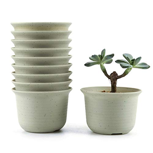 T4U 4.25 Inch Plastic Round Plant Pot/Cactus Flower Pot/Container Grey Set of 10,Seeding Nursery Planter Pot with Drainage for Flowers Herbs African Violets Succulents Orchid Cactus Indoor Outdoor
