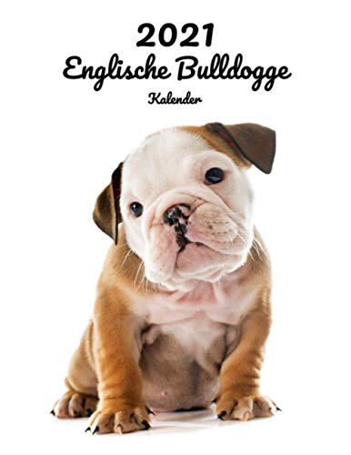 2021 Englische Bulldogge Kalender: 123 Seiten, DIN A4   14 Monate Kalender   Terminplaner   Tagebuch   Terminkalender   Organizer für Hundeliebhaber