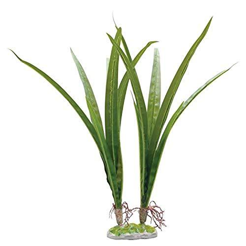 Fluval Acorus Plant for Aquarium, 14.5-Inch